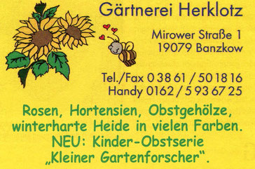 KUBB MIROW | SPONSOR | gärtnerei_herklotz